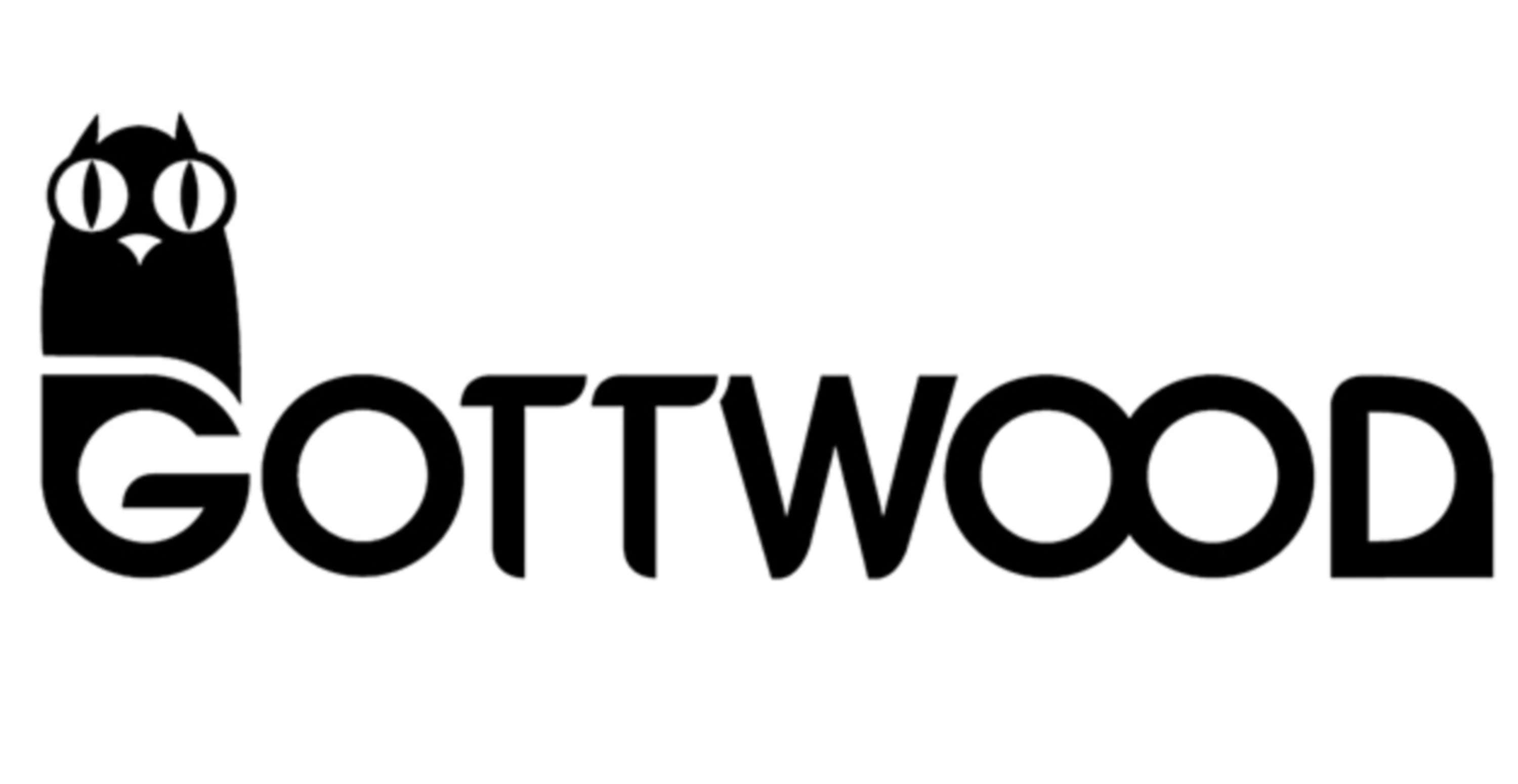 Gottwood Festival Review